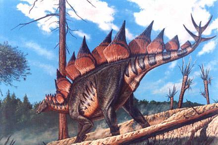 stegosaurus_stenops.jpg