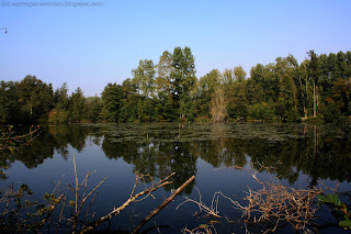 Un étang prés de Long