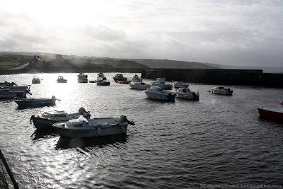 Port Cap-Lévi