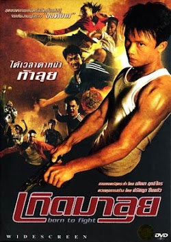 Sinh Ra Để Chiến - Born To Fight (2004) Poster