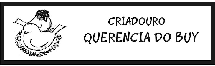 CRIADOURO QUERENCIA DO BUY
