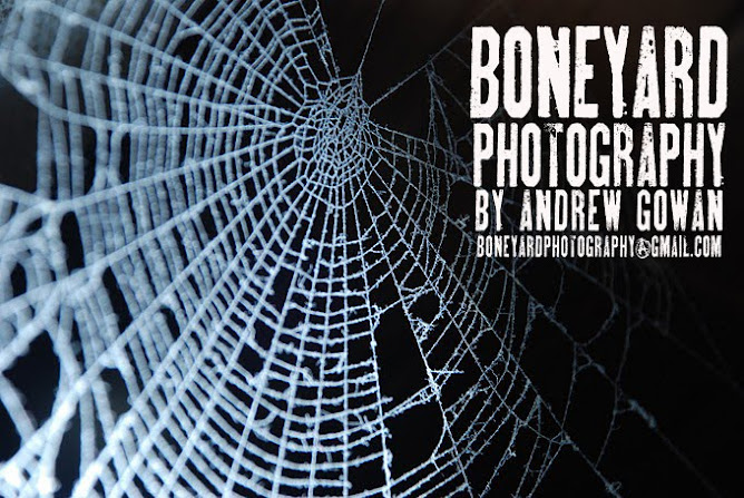 boneyard photography