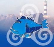 iroise-plongée