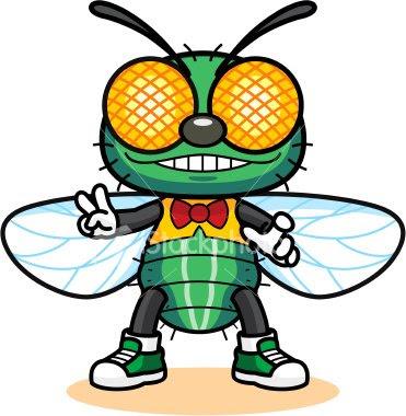 foto Tips Mengatasi Masalah Serangga Di Rumah