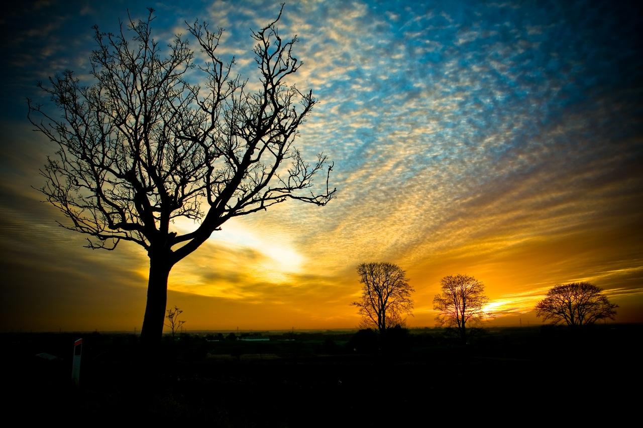 http://3.bp.blogspot.com/_GvxcwaoTBnI/TKW4I93gN1I/AAAAAAAABDA/hH7KMQ1t3to/s1600/free-wallpaper-desktop-wallpaper-nature-sunset-Voetmann.jpg
