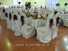Alina KAPELLER Telefon:0727 340 643 Decoratiuni, aranjamente sali nunta Beius-Bihor