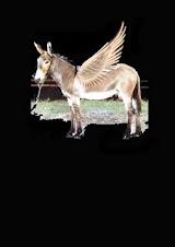 l'asino volante di Tremonti