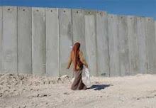 muro singolare e muri plurale