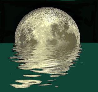 bile moon