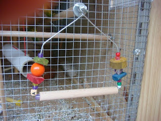 otros juguetes caseros para periquitos