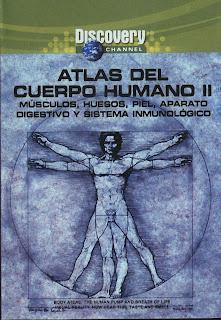 Milleniumovies100 dvd el cuerpo humano parte 2 for El interior del cuerpo humano