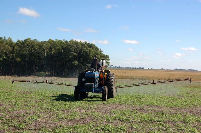 herbicidas: en acción, a pleno campo