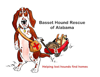We are Basset Hound Rescue of Alabama