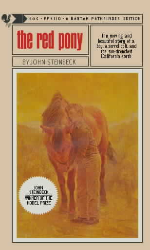 an analysis of the novel the red pony by john steinbeck The red pony by john steinbeck a study guide novel essential questions: • what sometimes-difficult but realistic lessons about life does the young.