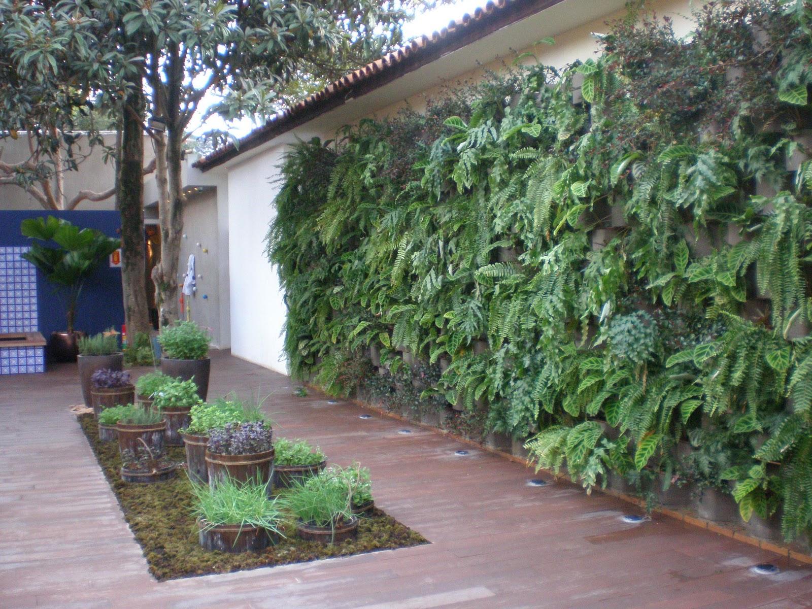 jardim vertical xaxim: xaxim ou vasinhos de parede e logo humanizáva-se o cantinho estreito