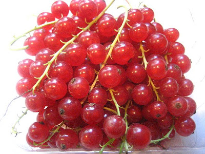 how to cook red currants