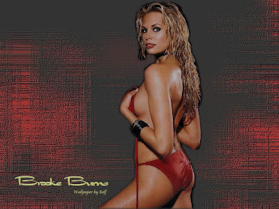 Hot Babes Wallpapers: Brooke Burns Wallpapers Daniel Bryan Iphone Wallpaper