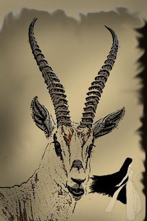 Najlepše bajke sveta - Page 2 Antilopa+i+Covjek+koji+je+sakupljao+granje