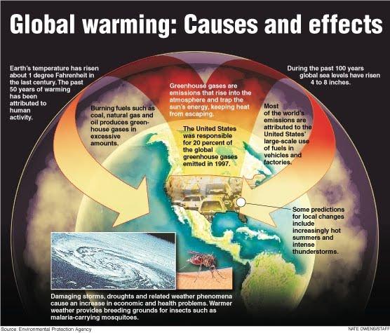 [Global_Warming_causes.jpg]