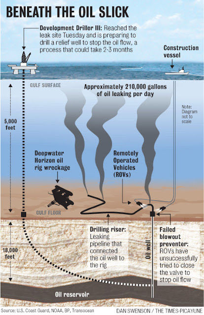 Diagram of what's under the oil slick