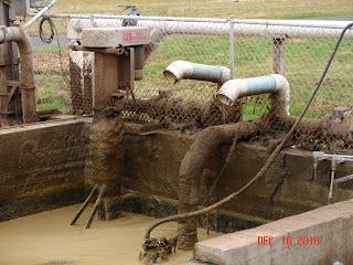Raw manure holding tank