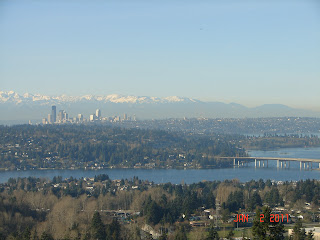 Looking west to downtown Seattle and the Olympic Mountains from Bellevue's Somerset neighborhood