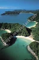 New Zealand coastline