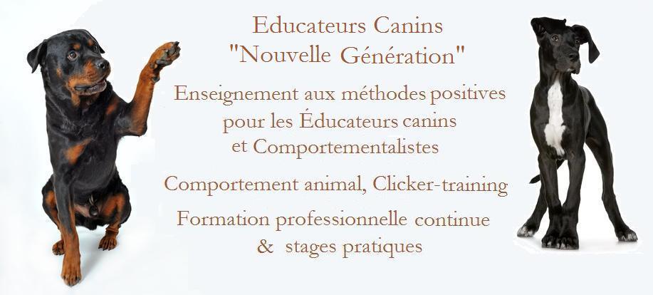 R+  Formation : Educateurs canins nouvelle génération