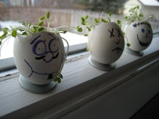 Sprouting Egg Heads