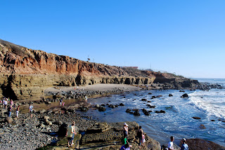 Cabrillo Tide Pools in San Diego
