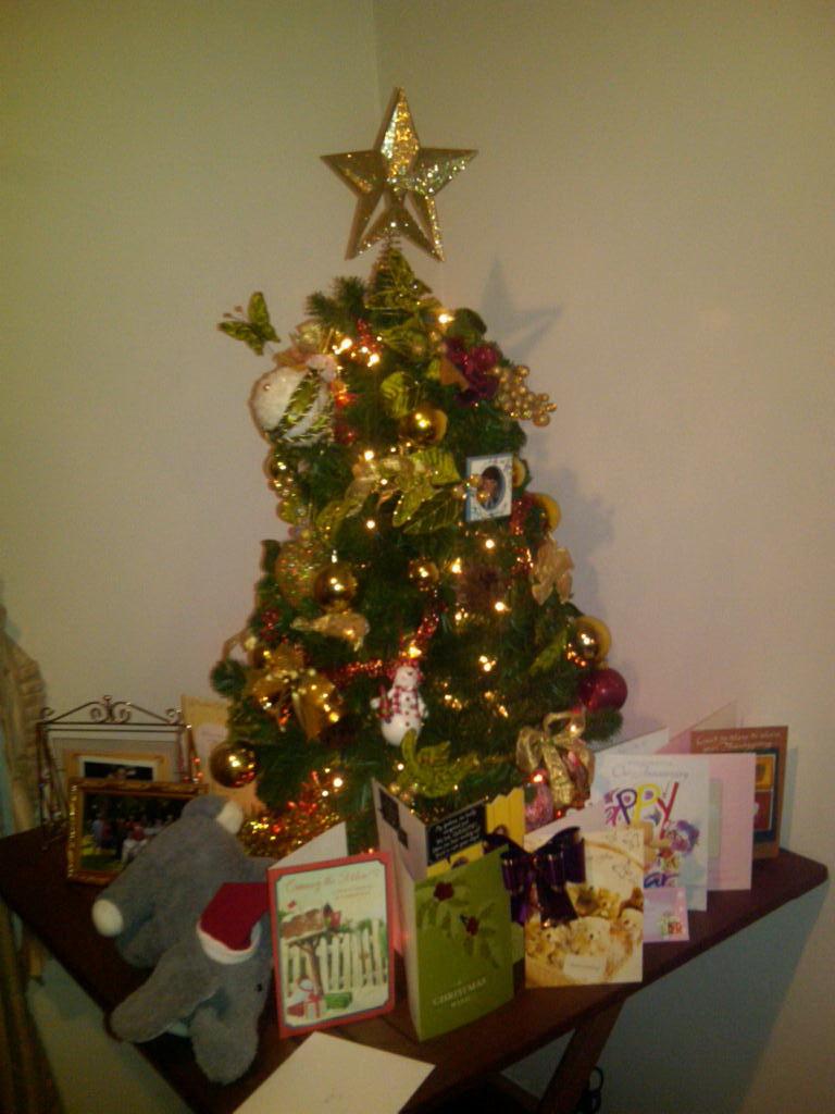 img00219 20101228 1940jpg - Christmas Tree Garbage Bag