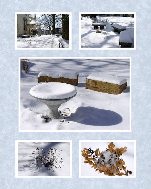Winter Scrapbook