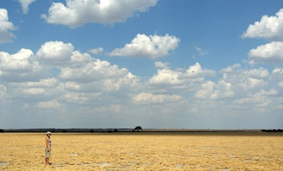photo safaris, photography, central kalahari, c4 images and safaris