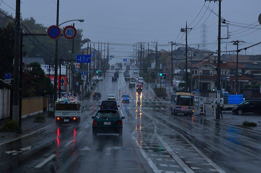 [雨の木曜日 _DSC7791.jpg]