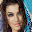 Hansika Motwani Bollywood Actress