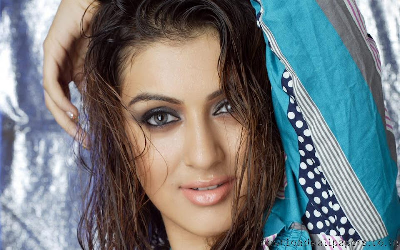 Bollywood Actress Hansika Motwani Wallpapers Hot Hansika Motwani Photo hot photos
