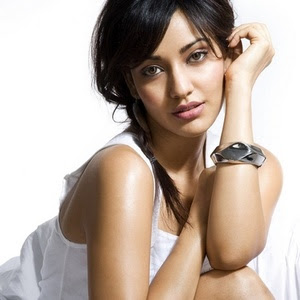 Neha+Sharma+Actress+Hot+Photos  3 Neha Sharma Actress Hot Photos, Crook Movie Actress Neha Sharma, Neha Sharma Wallpapers