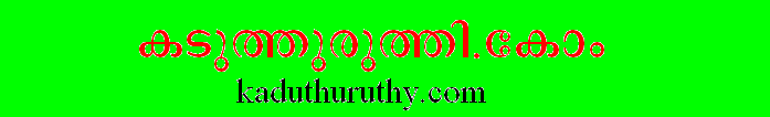 Kaduthuruthy