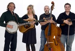 Ironweed Bluegrass Band