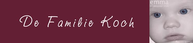 de belevenissen van de familie Koch
