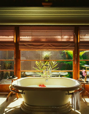 Tropical bathroom - Design Center - MSN Real Estate