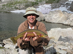 "20"" Golden Trout, WY"
