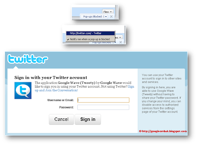 Step THREE: Allow pop-ups from Google Wave for authentication to Twitter