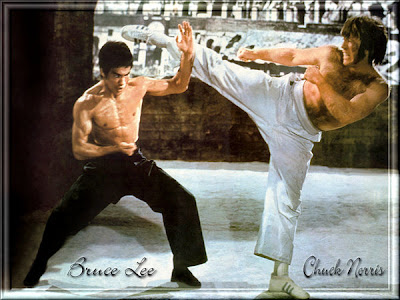 BRUCE LEE VS  CHUCK NORRIS by AND3ZIT Learn about Martial Arts from Around the World!
