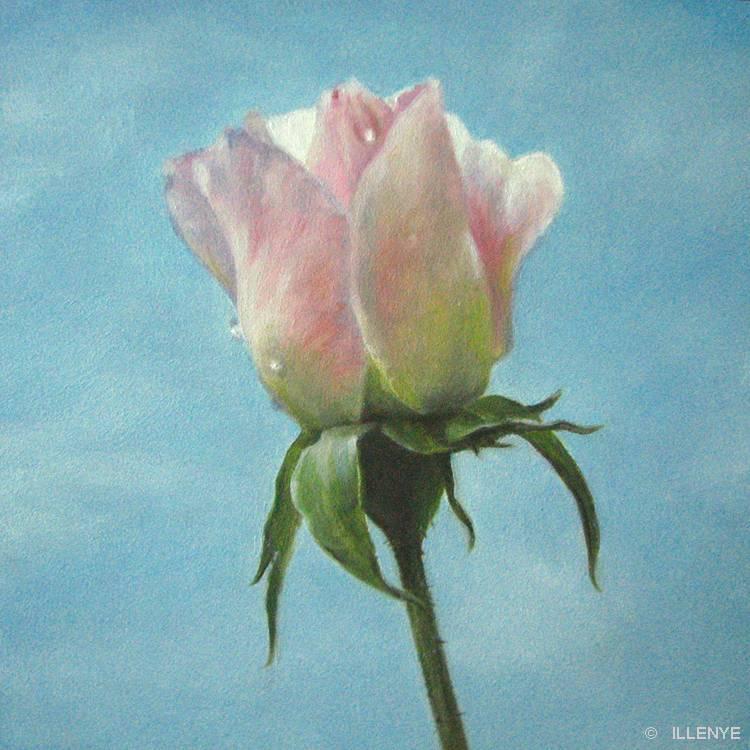Painting Blue Sky Blue Sky Oil Painting my