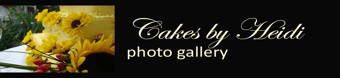 cakesbyheidi-cake gallery