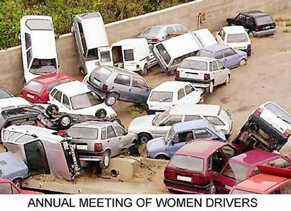 Funny Women Cars Drivers Seen On www.coolpicturegallery.us