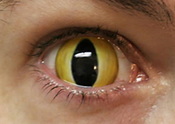 Weird  Eyes Lenses Seen On www.coolpicturegallery.us