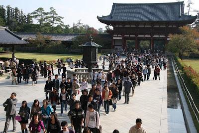 Nara japan by dantada