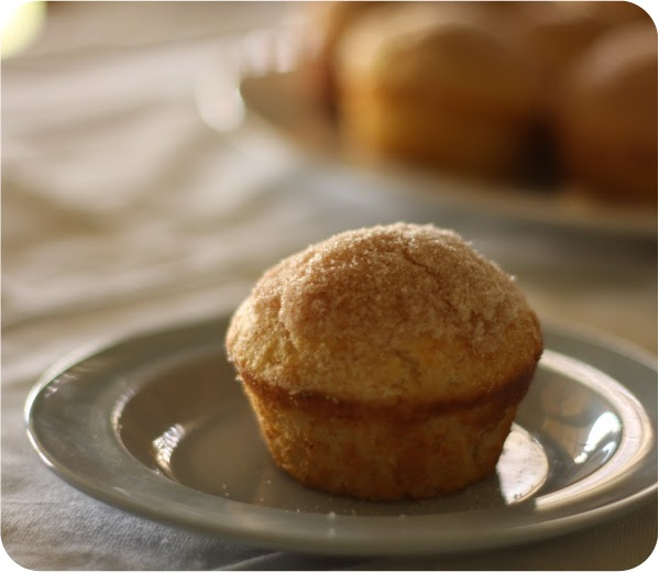 Confessions of a Bake-aholic: French Breakfast Muffins